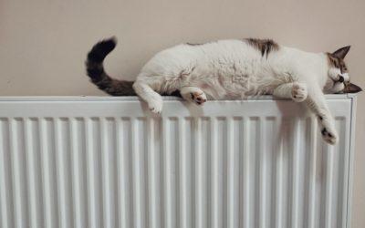 Les gestes simples pour faire des économies d'énergie dans son logement